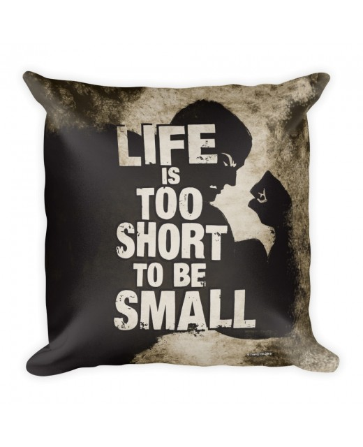 Pillow-Life-is-too-short